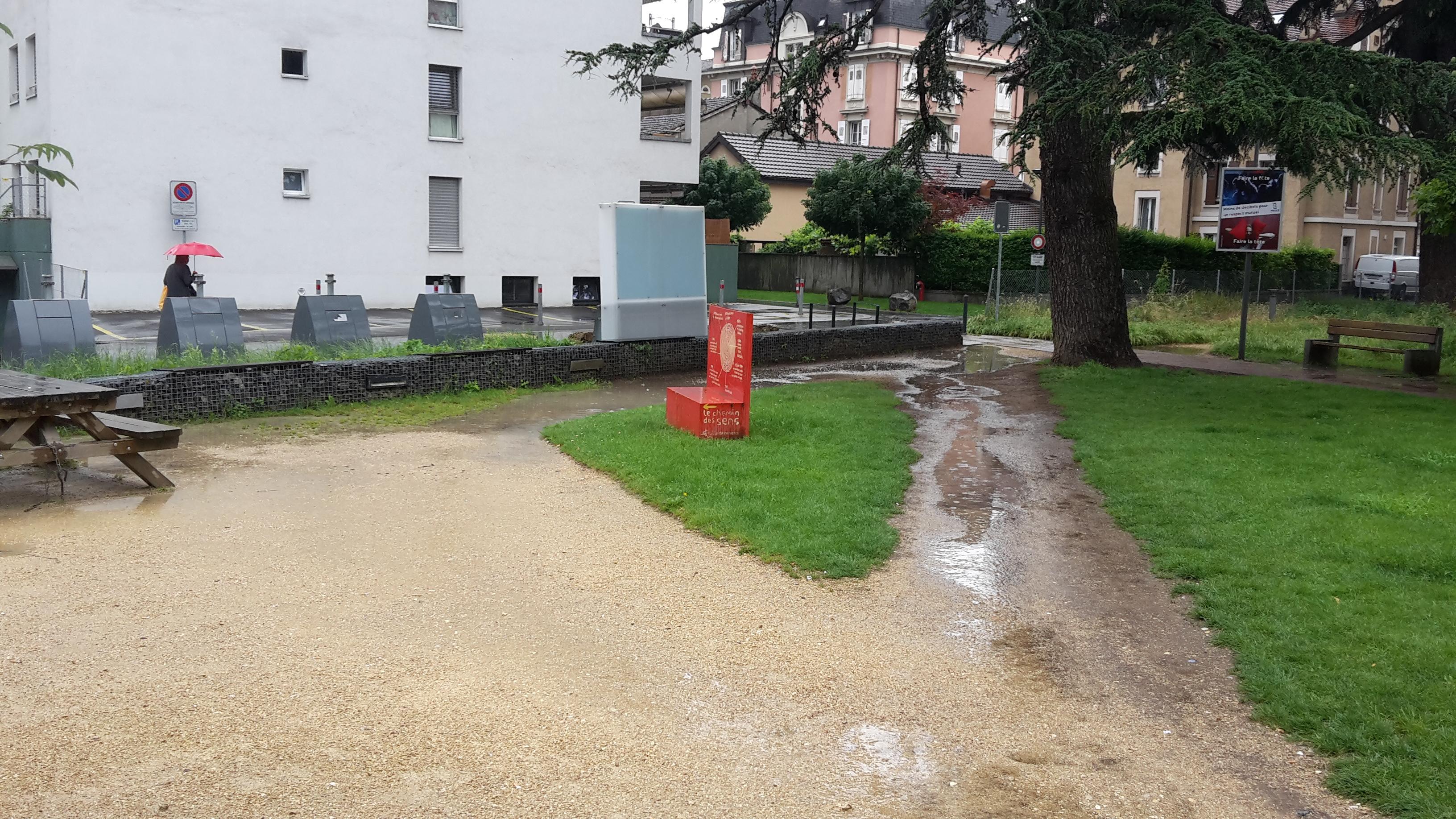 Chemin piétonnier dans le Parc des Cèdres